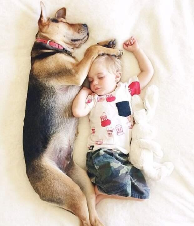 С тех пор, как он появился в их семье - они спят вместе!