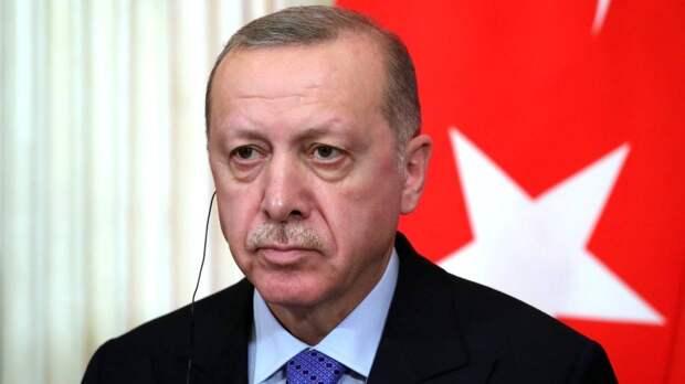 Эрдоган: Турция в случае необходимости продолжит отвечать на действия Дамаска в Сирии