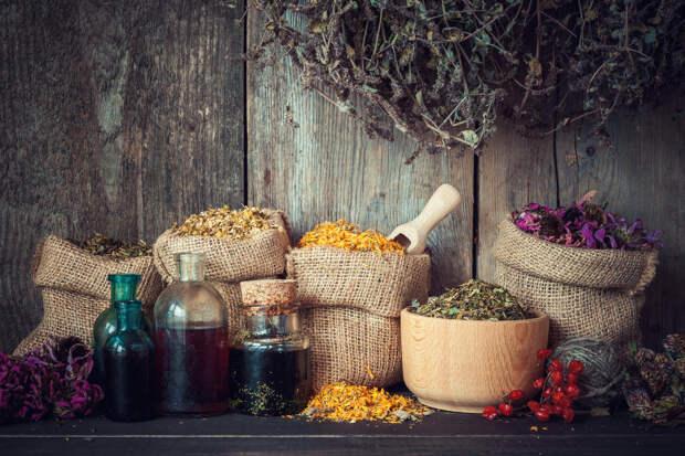 Лекарство или яд? Опасные для здоровья лекарственные растения