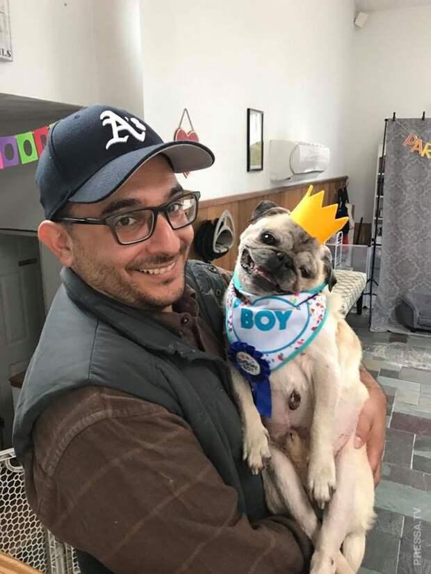 Собаку успокаивает манекен в одежде хозяина
