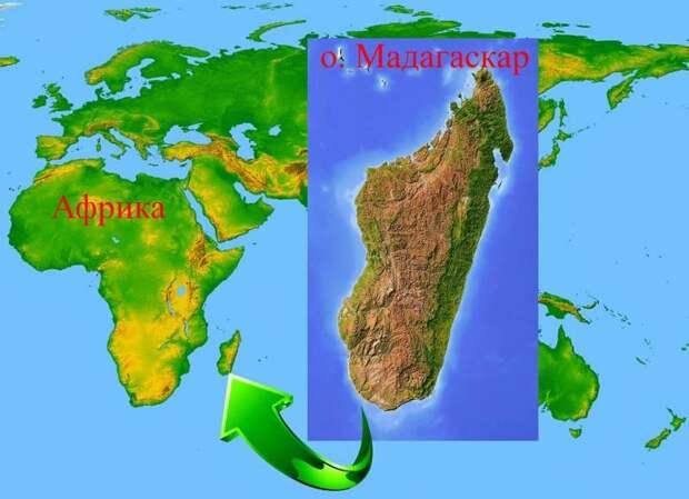«Евреев на Мадагаскар!» Как Польша избавлялась от иудеев