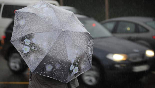 Мокрый снег и до плюс 2 градусов ожидается в Подольске в четверг