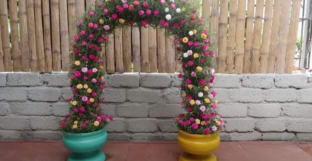 Цветочная арка, которая непременно станет украшением любого участка