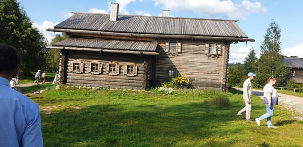 Дома в деревне Верхние Мандроги