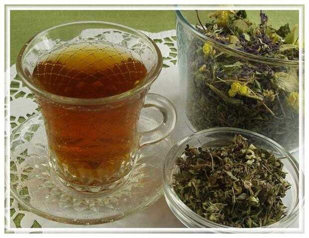 Иван-чай: полезные свойства проверены веками