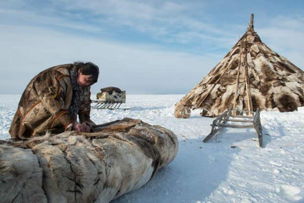 Как чукчи живут в тундре зимой