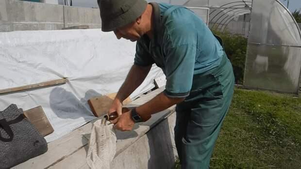 Простой и действенный способ развести белые грибы на участке