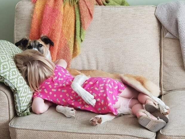 Любому ребенку нужен свой питомец!