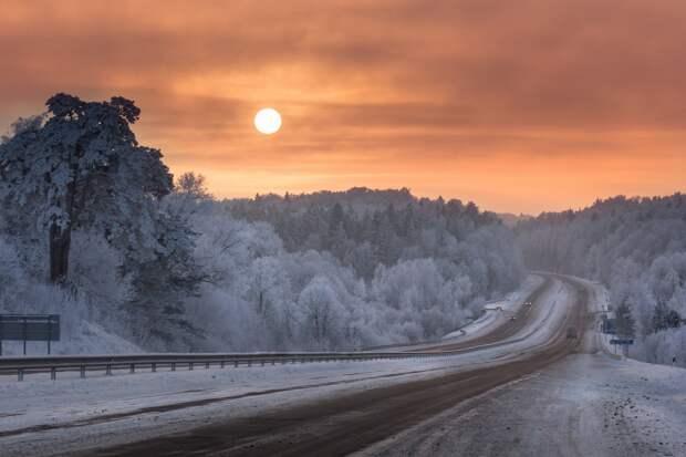 Зима. Подборка фотографий с инеем