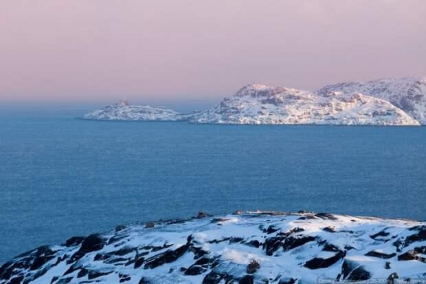 Экосистему Северной части Баренцева моря ждет катастрофа