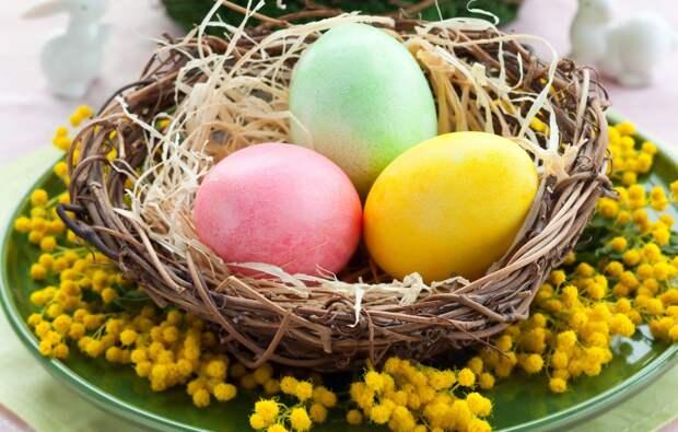 Красим пасхальные яйца в цвет планеты Земля с помощью салфетки