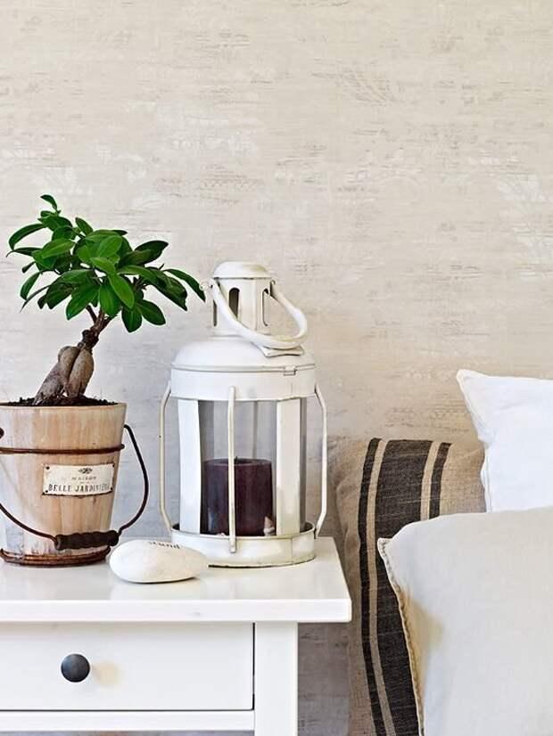 Комнатные растения в интерьере: 45 примеров оформления