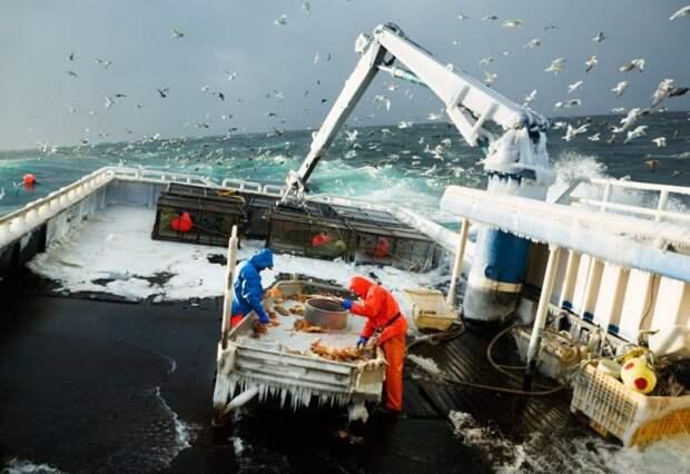 Суровое ремесло веселых рыбаков