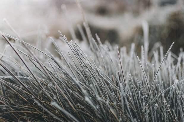 Москвичей предупредили о резком похолодании и мокром снеге