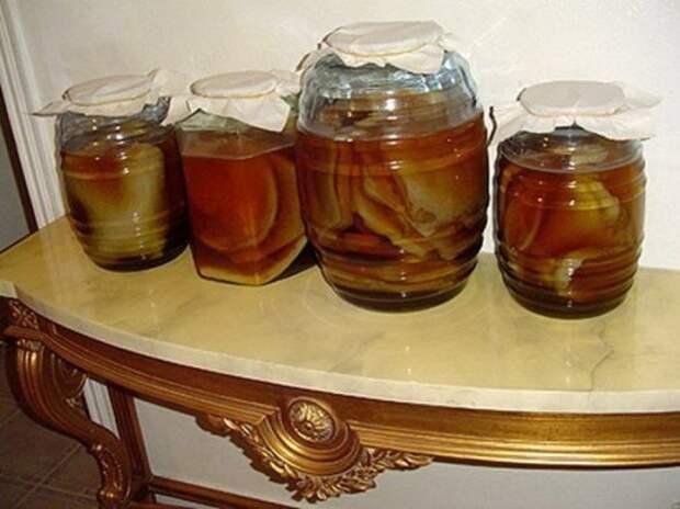 О пользе чайного кваса продолжают спорить. |Фото: yandex.com.