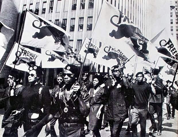 Социальные конфронтации в США 1960-х - 1970-х годов: Леворадикальная Партия черных пантер   (34)