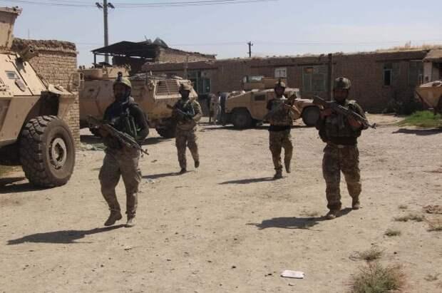 В Афганистане за сутки были ликвидированы как минимум 175 талибов
