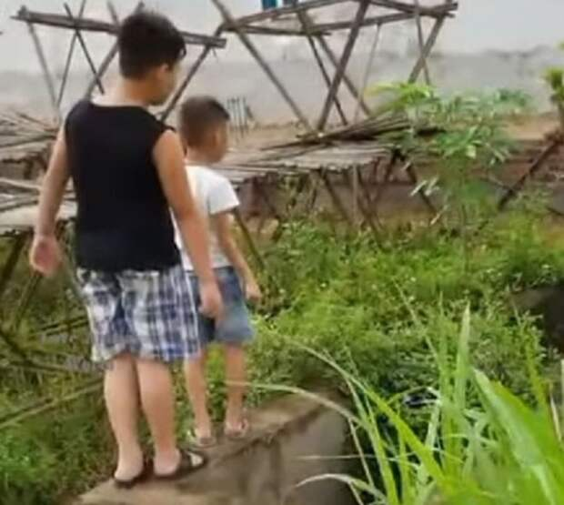 Два маленьких мальчика обнаружили крохотного щенка в грязной воде. Дети поняли, что самостоятельно не спасут его