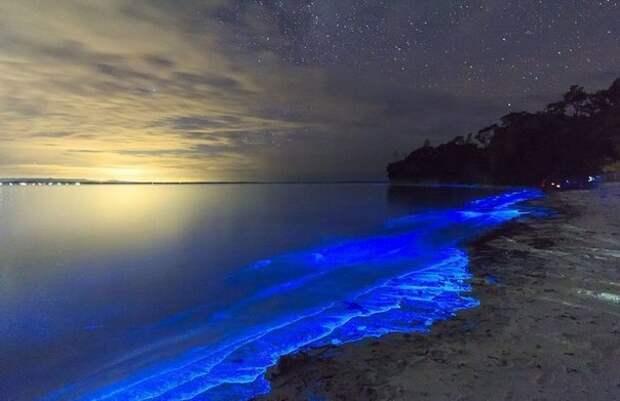 «Сияющее» побережье Австралии