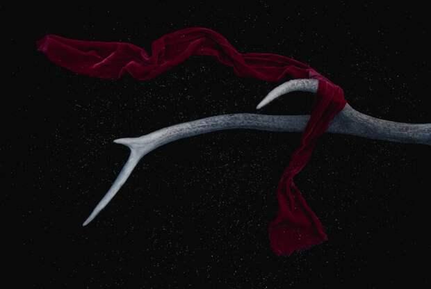 Мистическая история: шарф