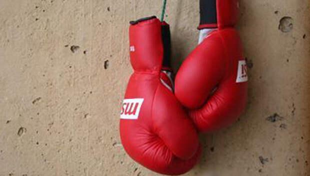 Турнир по кикбоксингу и тайскому боксу пройдет в Подольске в субботу