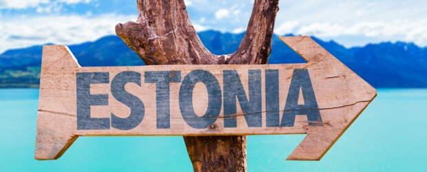 Задолбали! Эстония стонет от нашествия украинских гастарбайтеров