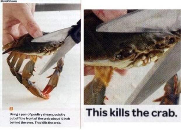9 угарных картинок из учебника, которые выглядят как полный абсурд