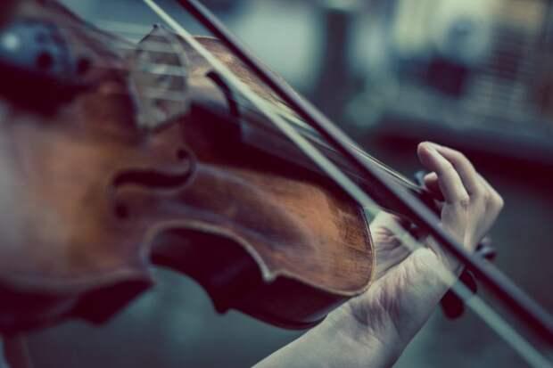 Живой концерт классической музыки пройдет на улице Клары Цеткин