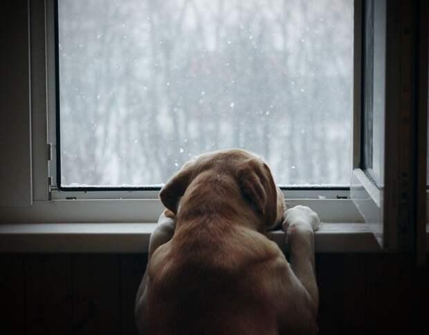 Мокрый снег ожидается в Удмуртии в четверг
