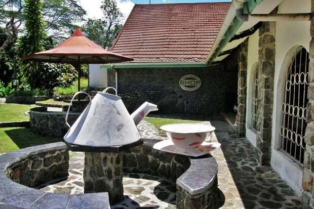 6. Сейшельские острова. 208 кг на душу населения 10 стран, где пьют больше всего чая