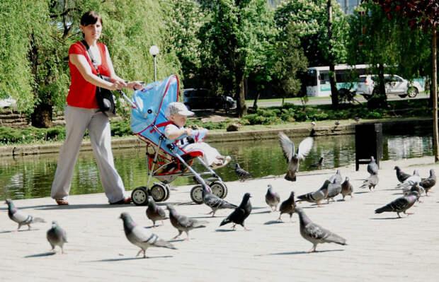На Кубани тысячи семей получают выплату на первого ребенка