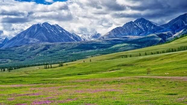 Маршрут «Силы Сибири-2» пройдет через Монголию