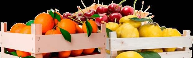Спелые фрукты круглый год. Нет ничего проще!