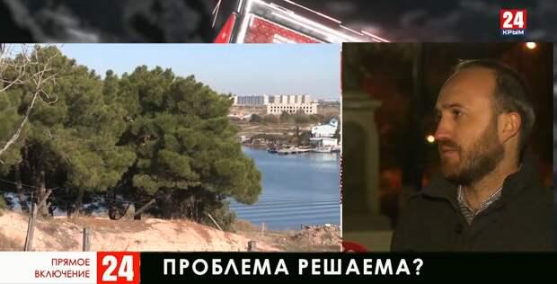 Как в Крыму пресекают вырубку краснокнижных деревьев