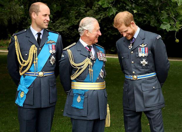 Принц Гарри получил две новые должности за последнюю неделю