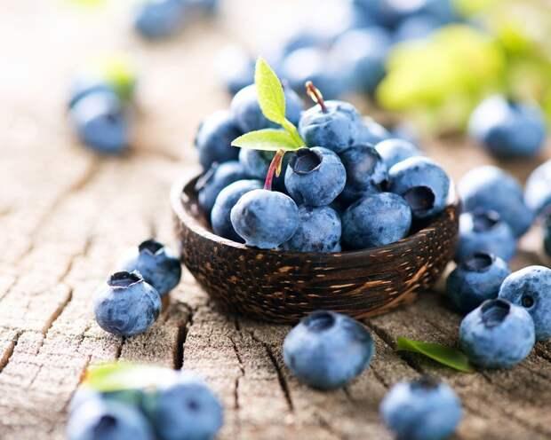 Голубика – элитная ягода