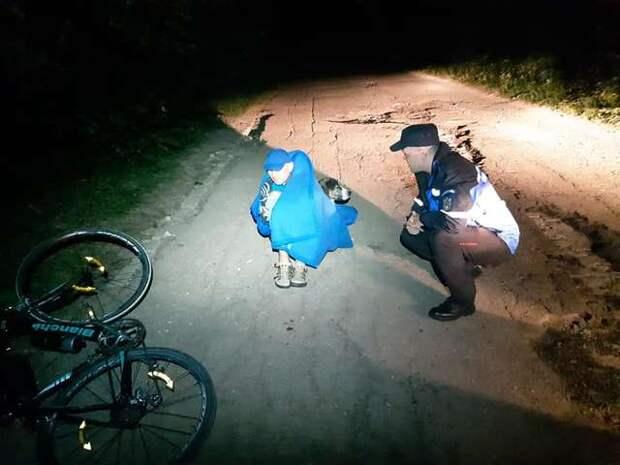 В Румынии бездомная собака всю ночь согревала раненого велосипедиста