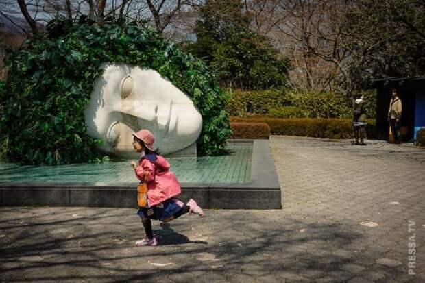 Забавные фотографии повседневной жизни в Японии