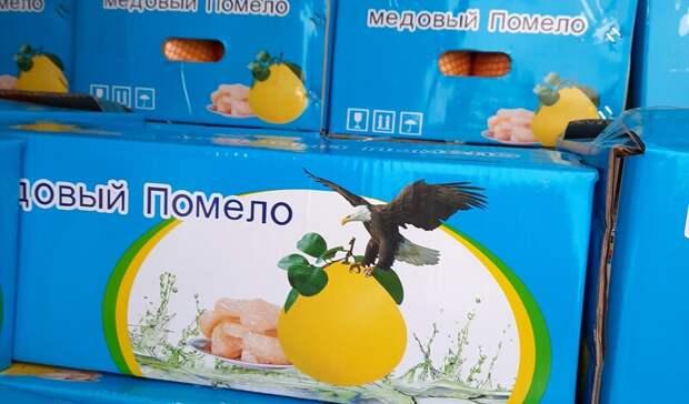 В Оренбуржье не пустили 114 тонн опасной продукции из Казахстана и Киргизии