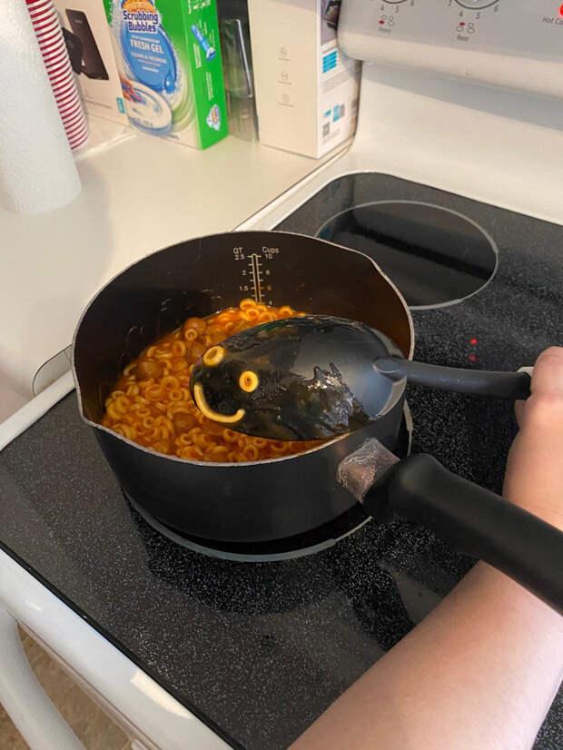 Американка готовила обед и увидела «чудо»