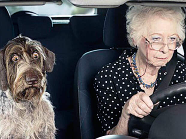 Извини, сынок, я педали перепутала. Есть ли опасный возраст для водителя?