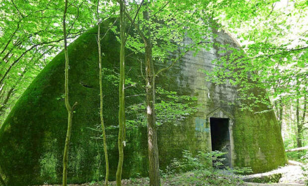 Бункер для поезда Гитлера: нашли в глухом лесу ставку Рейха