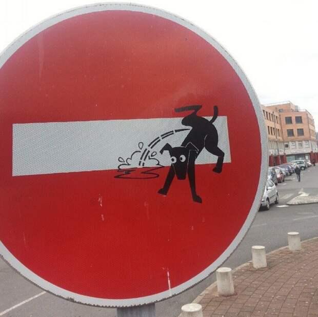 Дорожные знаки Флоренции как особый вид искусства