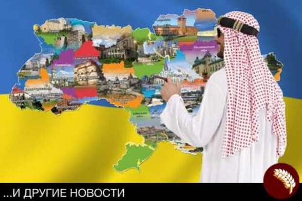ОАЭ примут участие в приватизации украинской промышленности