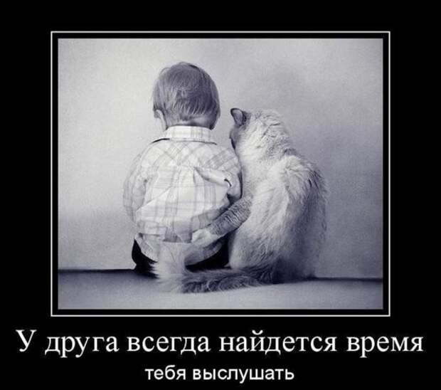 Мой друг дорогой и прилежный ...  Вадим Шефнер