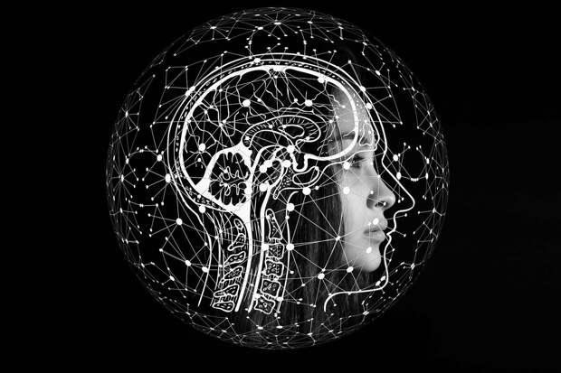 Интерфейсы «мозг-компьютер» | Кибернетика