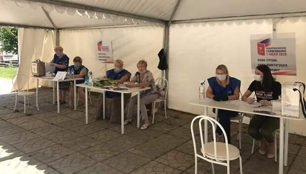 Среднесуточная явка на голосовании по Конституции РФ в Подмосковье составляет 10%