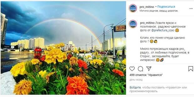 Фото дня: Двойная радуга над Митино