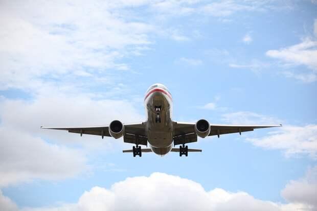 Авиакомпании предоставят льготы привитым от COVID пассажирам