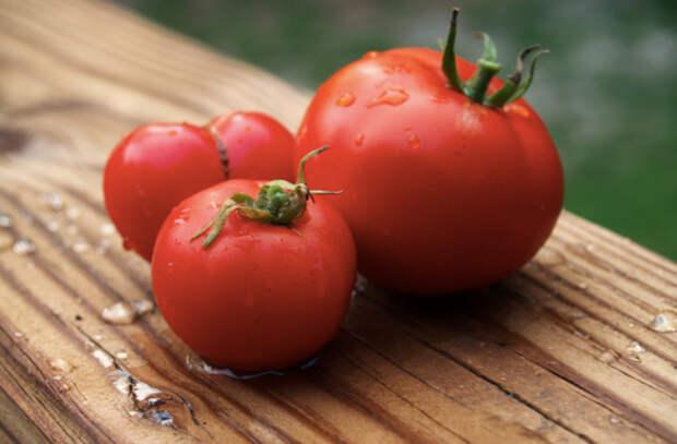 Спасаем подпортившиеся продукты: из них можно приготовить много блюд